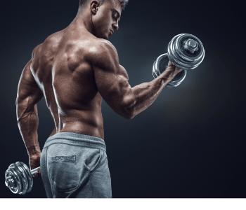 muscles detector działanie efekty skład cena