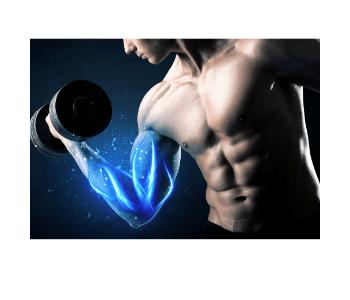 muscles detector opinie efekty czy działa