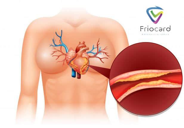 friocard dba o serce i zachowuje niskie ciśnienie krwi usuwa cholesterol